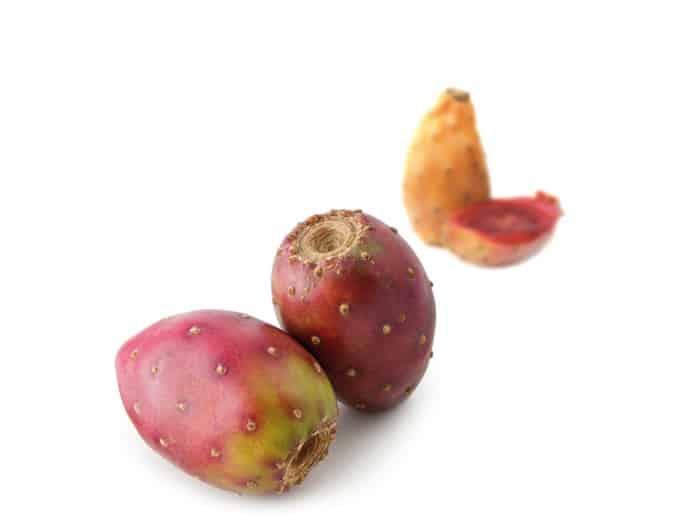 Fruit Exotique Cactus