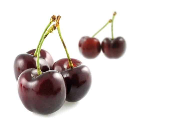 Fruit Rouge Griotte